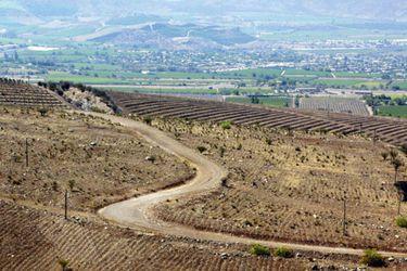 MONTE-PATRIA_los-cria-(22034297)