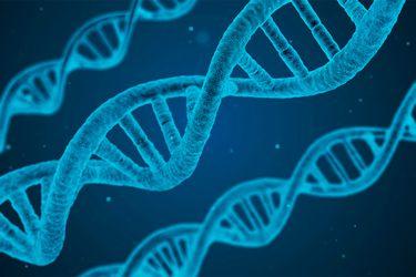 Ley permitió análisis de ADN para probar paternidad