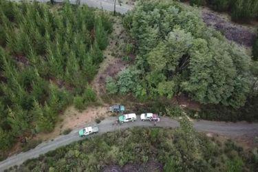 Carabineros incauta escopeta y un vehículo tras ataque de desconocidos a predio forestal en Carahue