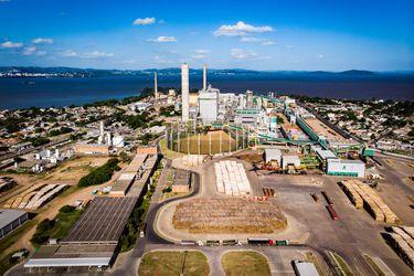 CMPC anuncia inversión de US$530 millones en Brasil