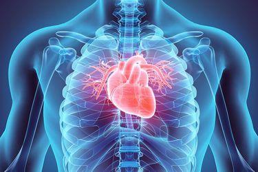 El Covid-19 daña al corazón independiente de la gravedad de la infección, según experto