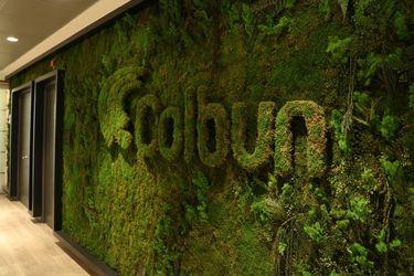 Colbún llega a acuerdo con Goldman Sachs para vender cuentas por cobrar de distribuidoras a Chile Electricity