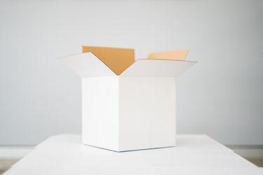Ha llegado caja: conoce el mundo de las suscripciones
