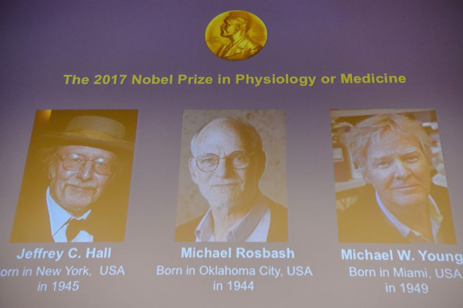 Winners of the 2017 Nobel Prize in Physiology or Medicine (L-R) US tr