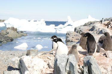 Observatorio de Cambio Climático: una oportunidad para transformar datos en información