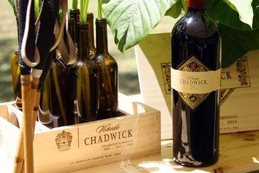 Los 10 mejores vinos chilenos