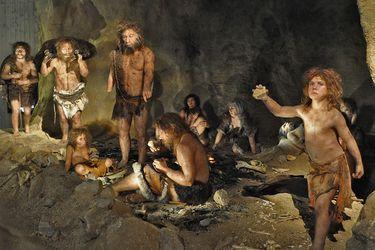 El cambio climático propició herramientas neandertales más complejas