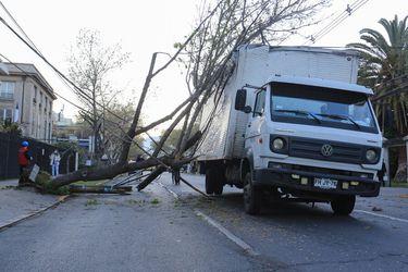 Camión derribó varios postes en Providencia y generó corte de tránsito en Eliodoro Yáñez