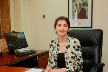Gobierno nombra a Rosario Martínez como nueva directora del Sename