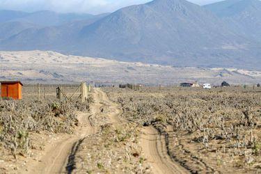LOS CHOROS, calle las Bandurrias que sirve de entrada a Loteos u