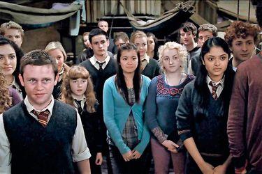Las 5 cosas que el Ejército de Dumbledore nos enseñó acerca del activismo y la resistencia política