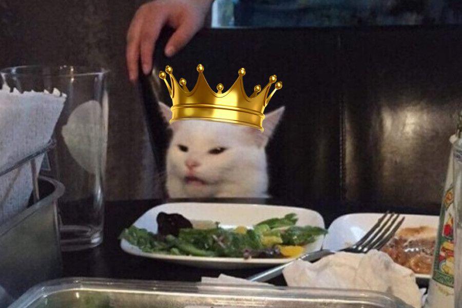 meme-gato-rey