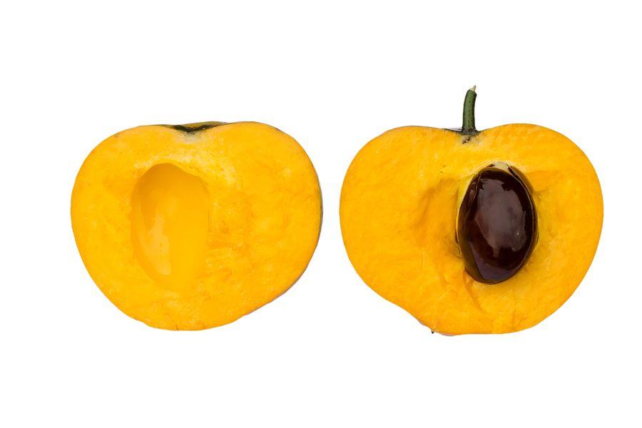 Egg fruit cross section