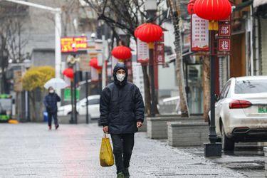 ¿Murciélagos? ¿Un laboratorio? Delegación de la OMS viaja a China para dilucidar cuál fue el verdadero origen del coronavirus