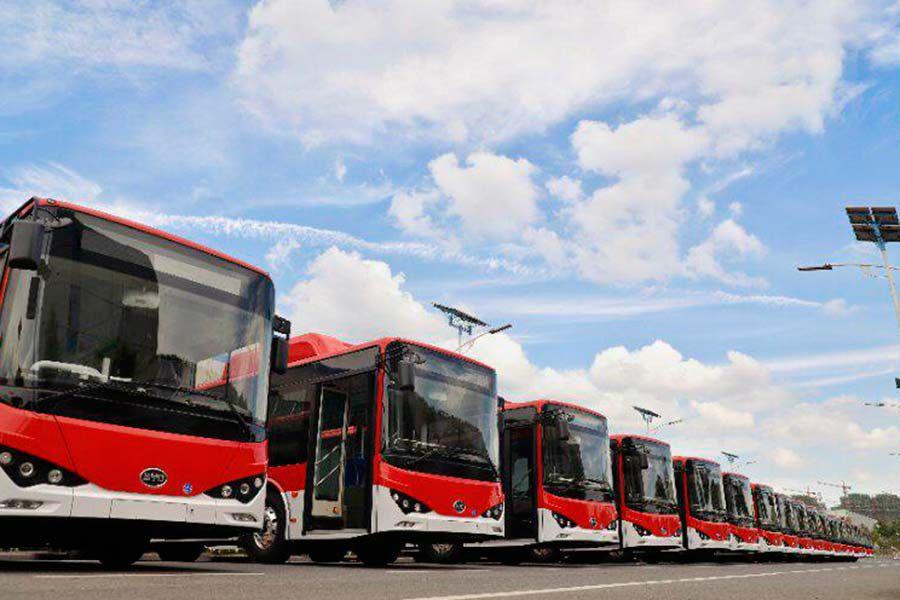 Buses-eléctricos-1