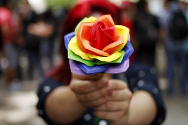 Comisión de Constitución de la Cámara aprueba en forma unánime la idea de legislar proyecto de matrimonio igualitario