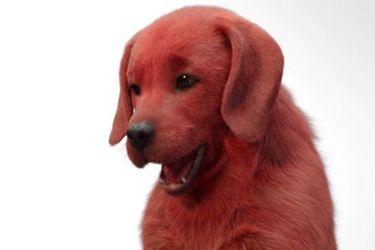 Así se verá Clifford, el gran perro rojo, en su nueva película