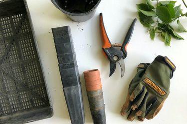 Cuáles son las herramientas indispensables para jardinear