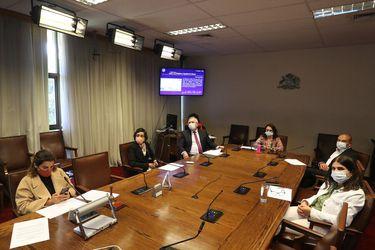 Proyecto de despenalización del aborto hasta las 14 semanas es aprobado en particular: iniciativa es despachada a sala por la comisión de mujeres