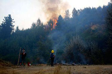 Intendencia de La Araucanía declara alerta roja para comuna de Lautaro por incendio forestal