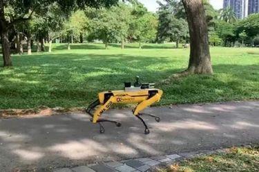 """¿Black Mirror? En Singapur usan """"perros robots"""" para reforzar el distanciamiento social"""