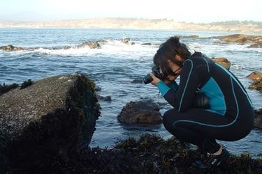 La científica que busca restaurar algas con nuevas cepas resistentes al cambio climático