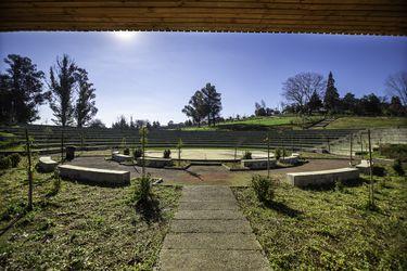 Casi 5 hectáreas y un anfitreatro para 1.500 personas: Nacimiento inaugura su nuevo pulmón verde