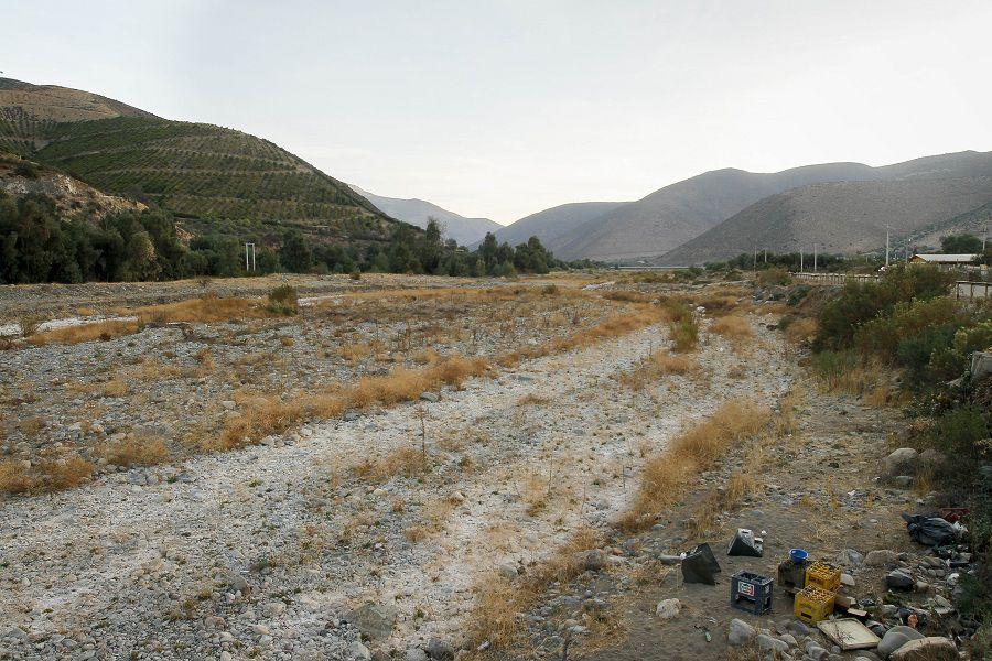 PETORCA: Plantaciones de palta que estaria causando la sequía en el sector