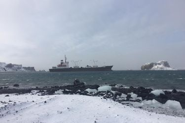 Armada inicia operativo para rescatar buque varado en la Antártica