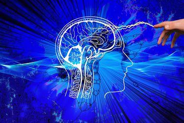 Diez años de BNI: traspasando las fronteras a través de la neurociencia