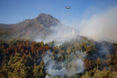 Onemi declara alerta temprana preventiva para región de La Araucanía por posibles incendios