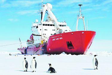 buque antártica