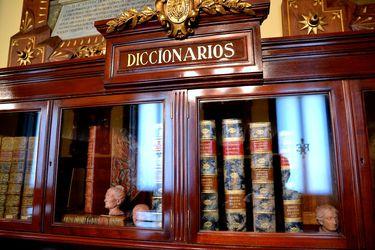 """""""Ganarse"""" y otros chilenismos bajo la lupa de la Academia"""