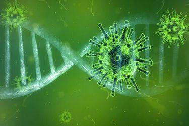 Covid-19: Estudio descubre agresiva mutación que aumenta potencial de propagación y que está presente en Chile