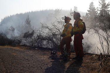 Intendencia del Biobío declara alerta roja en Los Ángeles por incendio forestal