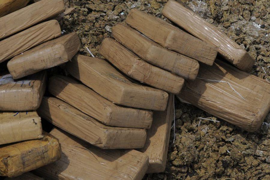 Panamá destruye nueve toneladas de drogas decomisadas al narcotráfico
