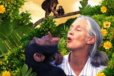 """Jane Goodall: """"A los 10 años decidí que viviría con animales salvajes"""""""