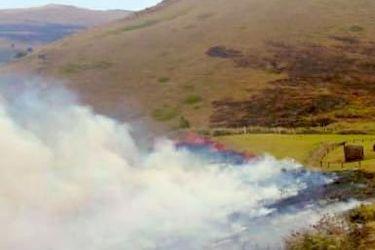 Controlan incendio forestal en el Parque Nacional Rapa Nui en Isla de Pascua