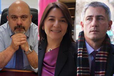 Ya está la terna de abogados que postula al cargo de defensor nacional y que debe resolver el Presidente Piñera