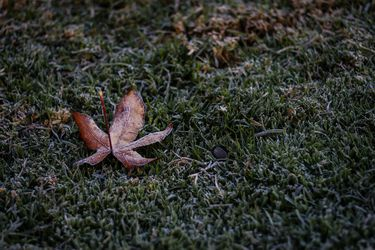 Las heladas matinales continuarán en la semana: 2,6º bajo cero fue la mínima en Pudahuel este domingo