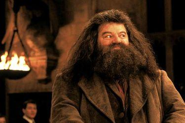 Eddie Redmayne quiere que Hagrid aparezca en Fantastic Beasts