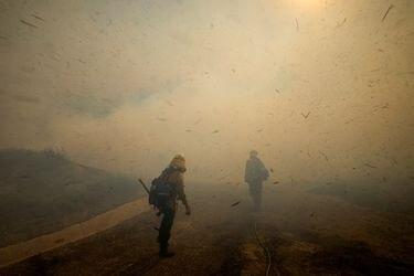 Nuevos incendios forestales obligan a evacuar a unas 90 mil personas en California
