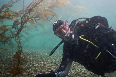 La geógrafa chilena que creó el primer mapa de un bosque de algas en el mundo