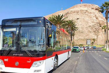 170 unidades: Arica será la primera ciudad de regiones en contar con una flota de buses eléctricos