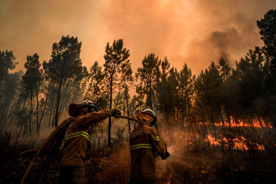 Incendio forestal Portugal (1)