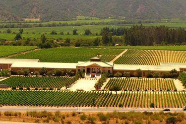 Holding español adquiere la totalidad de viñedos Veramonte y Neyen Apalta State