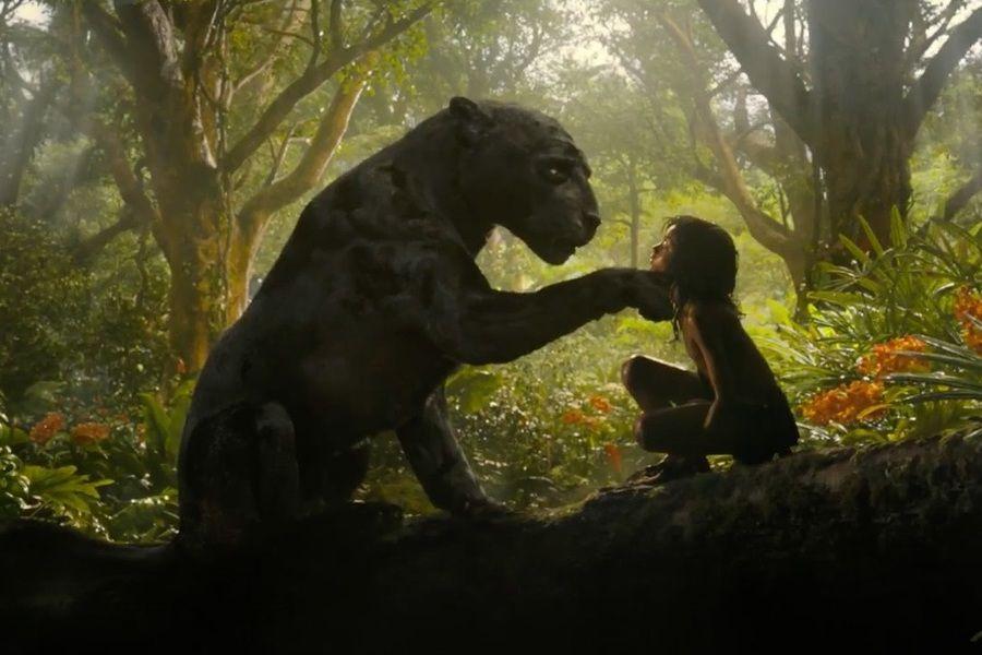 Mowgli (1) (1)