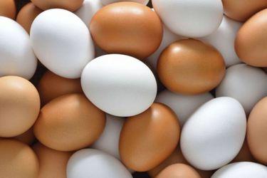 Guía para elegir y cocinar huevos