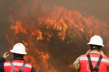 Conaf aumenta brigadistas y medios para combatir los incendios forestales