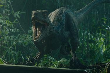"""Colin Trevorrow cree que Jurassic World: Dominion será la """"culminación"""" de la franquicia"""